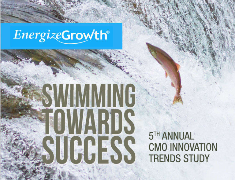 5th annual CMO innovation trends survey from Lisa Nirell CMO white paper